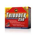 All Stars Tribudex 250 - 100 капс