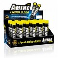 All Stars Amino Liquid  9.500 (18*25 мл)