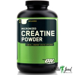 Optimum Nutrition Creatine Powder - 600 грамм