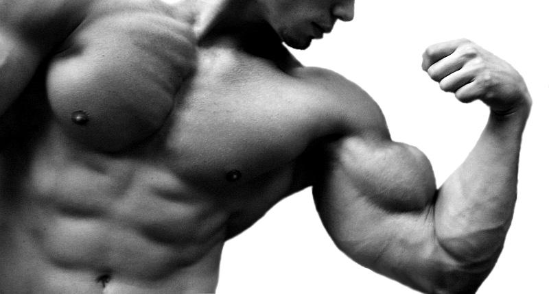 казеин для набора мышечной массы