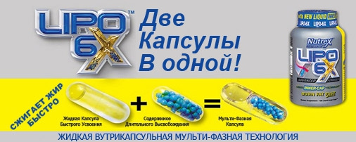 lipo-6x состав